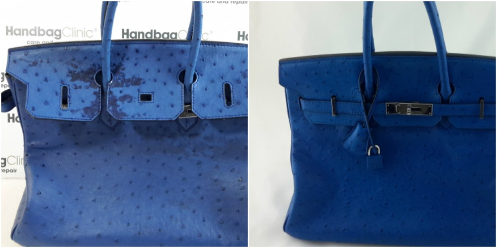 Coloration d'autruche bleue Birkin